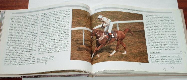 Houghton-Kit-Horses-Bristol-Parragon-1994-kon-konie-hippika-horse-photo-foto