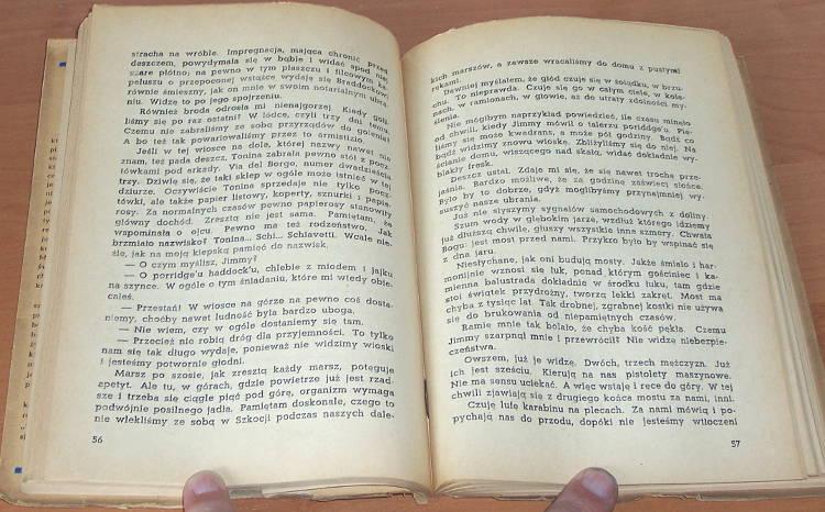 Schweizer-Richard-Ostatnia-szansa-Powiesc-Katowice-Wydawnictwo-Awir-1947-Tlum-Galuszkowa-Sicinska-Die-letzte-Chance