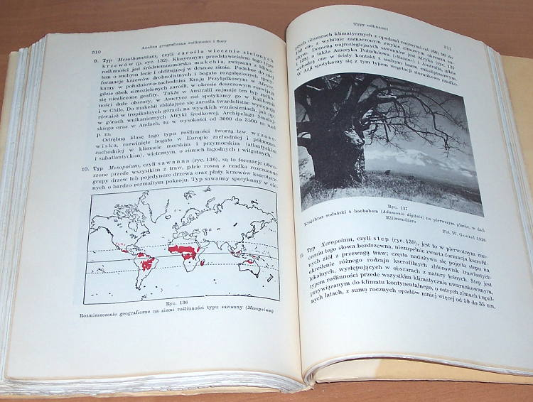 Szafer-Wladyslaw-Zarys-ogolnej-geografii-roslin-Warszawa-Czytelnik-1949-Biblioteka-Podrecznikow-Akademickich