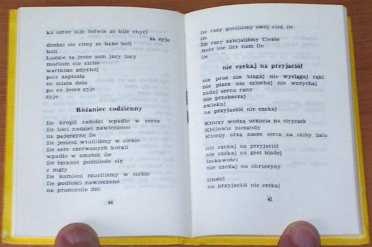 Czubernatowa-Wanda-Ploty-za-koty-Nowy-Sacz-Sadecka-Oficyna-Wydawnicza-1986-wiersze-goralskie-Tatry-Podhale