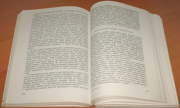 Kopcewicz-Sienicka-Historia-literatury-Stanow-Zjednoczonych-w-XX-PWN-1982-USA-American-Literature-History-Americana