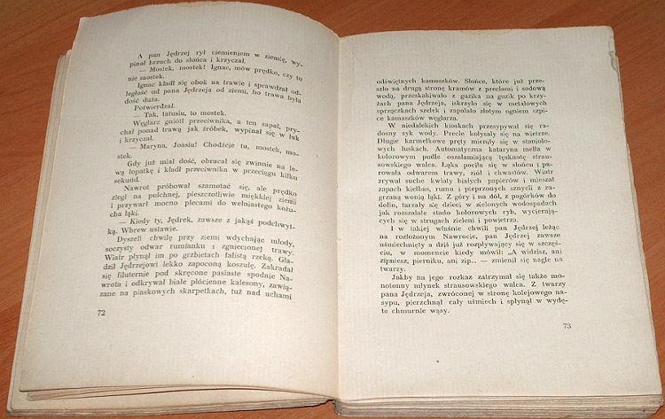 Rusinek-Michal-Pluton-z-dzikiej-laki-Powiesc-Wyd-2-Wydawn-E-Kuthana-1946-Biblioteka-Prozaikow-Polskich