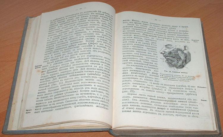 Baranov-A-I-Rukovodstvo-dlia-rotnyh-feldsherov-i-feldsherskih-uchenikov-S-Peterburg-Tipo-Litografiia-Svet-1908