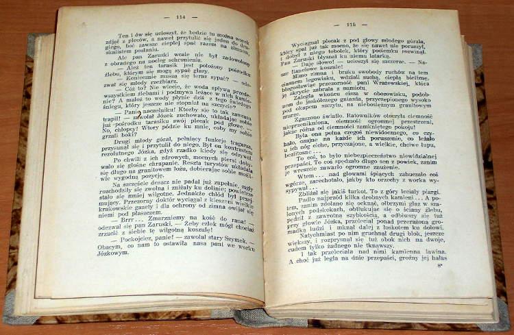 Roguska-Cybulska-Jadwiga-Tajemnica-Tatr-Powiesc-Poznan-Warszawa-Wilno-Lublin-nakladem-Ksiegarni-sw-Wojciecha-1933