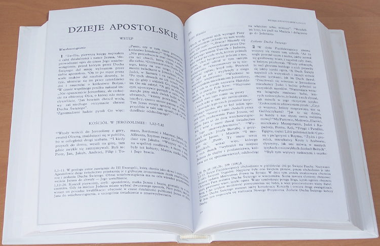 Pismo-swiete-Nowego-Testamentu-Nowy-Testament-Wyd-VI-Poznan-Ksiegarnia-Swietego-Wojciecha-1999-Biblia