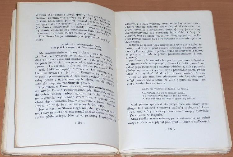 Jastrun-Mieczyslaw-Wizerunki-Szkice-literackie-Warszawa-PIW-1956-Mickiewicz-Slowacki-Puszkin-Lesmian-Tuwim-Rudnicki