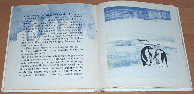 Centkiewiczowie-Alina-i-Czeslaw-Zaczarowana-zagroda-Warszawa-Biuro-Wydawnicze-Ruch-1969-Ilustrowal-Toepfer