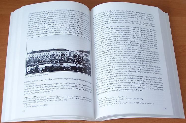 Olejnik-Tadeusz-Wielun-Dzieje-miasta-1793-1945-Lodz-Wielun-Polskie-Towarzystwo-Historyczne-Urzad-Miejski-2008